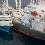 La Comisión Europea abre un proceso sancionador contra Francia por no controlar su flota pesquera internacional